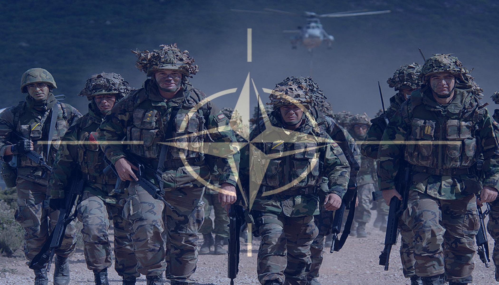 """Бойцы """"Азова"""" обезвредили несколько диверсионно-разведывательных групп противника под Мариуполем, - Штаб обороны города - Цензор.НЕТ 8595"""